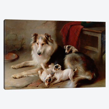 A Collie with Fox Terrier Puppies, 1913 Canvas Print #BMN1019} by Walter Hunt Art Print