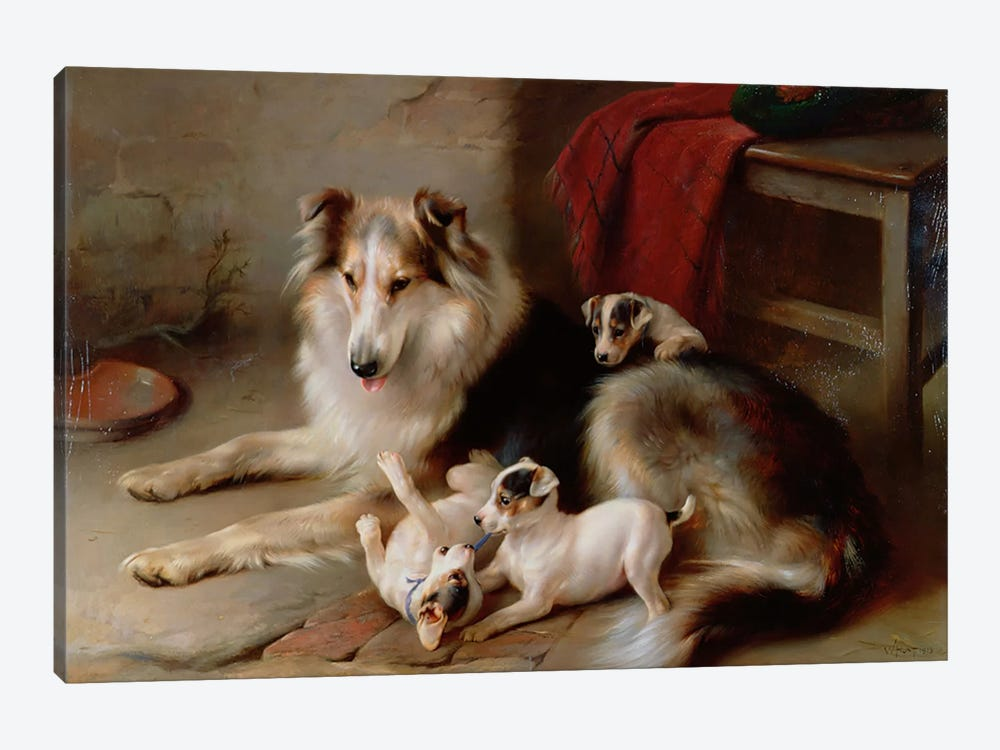 A Collie with Fox Terrier Puppies, 1913 by Walter Hunt 1-piece Canvas Print
