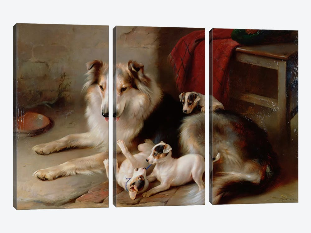 A Collie with Fox Terrier Puppies, 1913 by Walter Hunt 3-piece Art Print