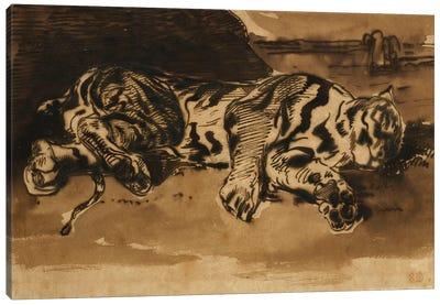 Tiger Lying Down; Tigre Couche, 1858  Canvas Art Print