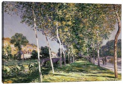 The Walk, 1890  Canvas Art Print