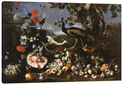 A Peacock and a Penhen with Fruit and Flowers in a Park,  Canvas Art Print