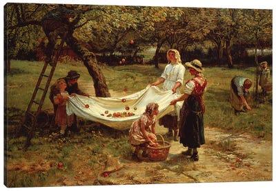 The Apple Gatherers, 1880 Canvas Art Print