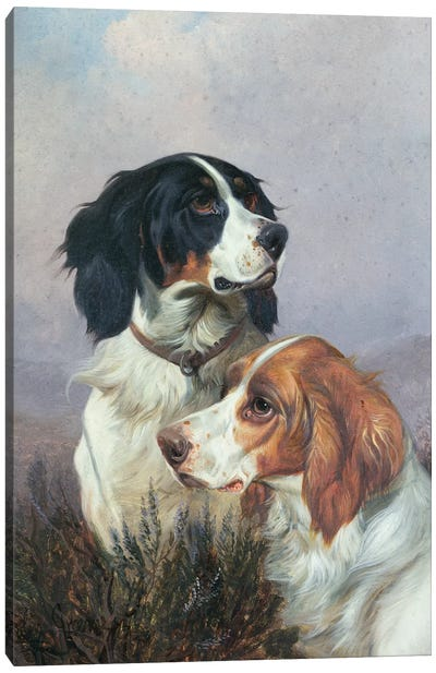 Setters on a Moor, 1892 Canvas Art Print