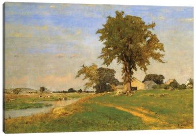 Old Elm at Medfield, 1860  Canvas Art Print