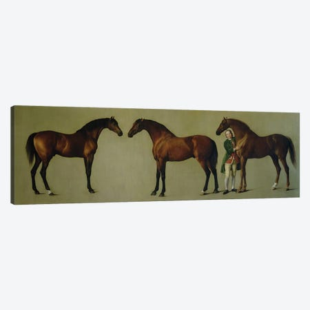 """""""Whistlejacket"""" and two other Stallions with Simon Cobb, the Groom, 1762  Canvas Print #BMN10347} by George Stubbs Canvas Print"""