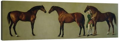 """""""Whistlejacket"""" and two other Stallions with Simon Cobb, the Groom, 1762  Canvas Art Print"""