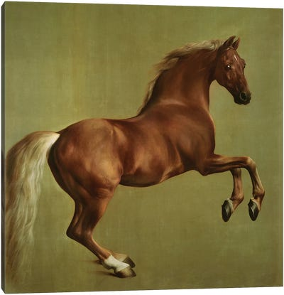 """Whistlejacket"", 1762 Canvas Art Print"