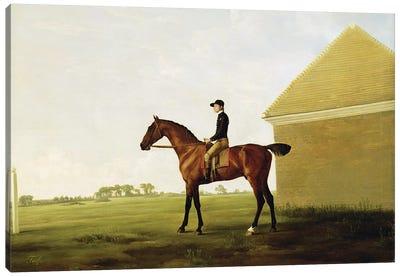 Turf, c.1765   Canvas Art Print