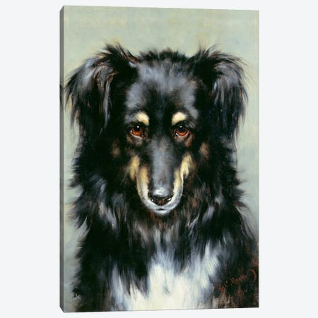 A Black and Tan Collie, 1890  Canvas Print #BMN1035} by Robert Morley Canvas Wall Art