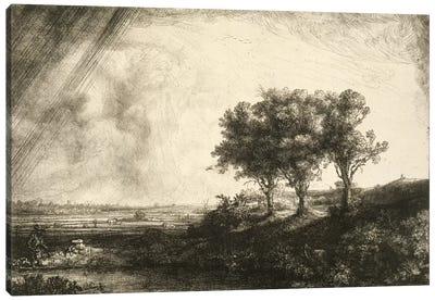 23.K5-292 The Three Trees  Canvas Art Print