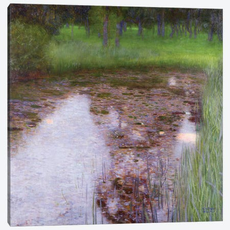 The Swamp, 1900  Canvas Print #BMN10456} by Gustav Klimt Canvas Art Print