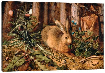 A Hare in the Forest, c. 1585  Canvas Art Print