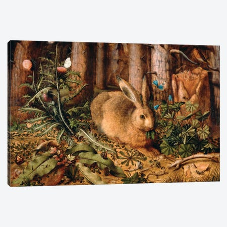 A Hare in the Forest, c. 1585  Canvas Print #BMN10473} by Hans Hoffmann Canvas Artwork