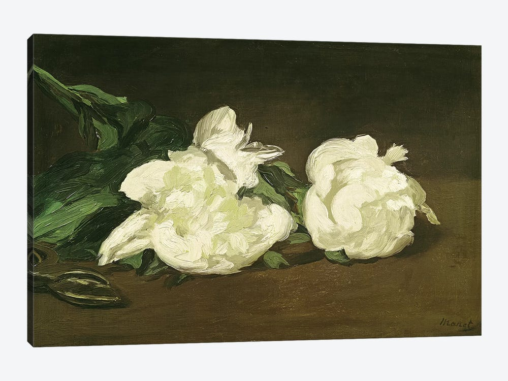 Branch of White Peonies and Secateurs, 1864  by Edouard Manet 1-piece Canvas Artwork