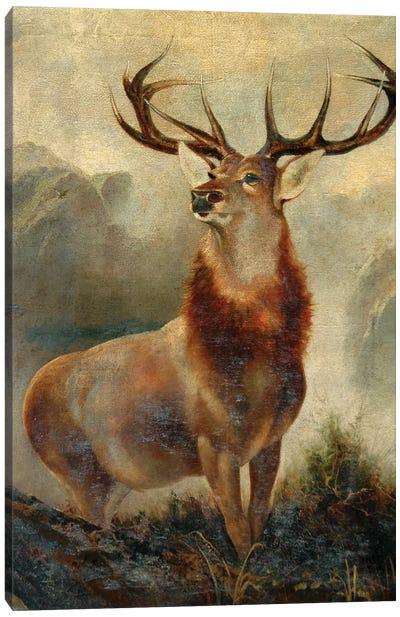 Stag At Bay  Canvas Art Print