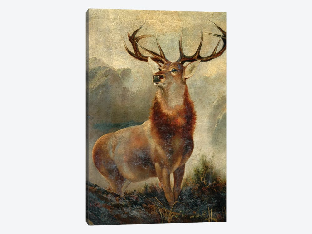 Stag At Bay  by James Ford 1-piece Canvas Art Print