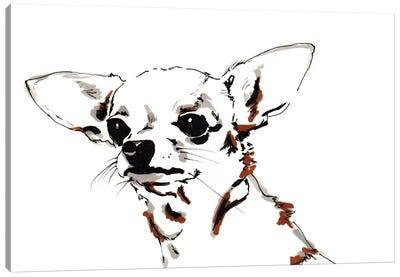 Big Ears the Chihuahua, 2012  Canvas Art Print