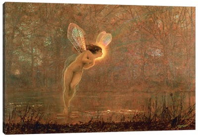 Iris, 1886   Canvas Art Print