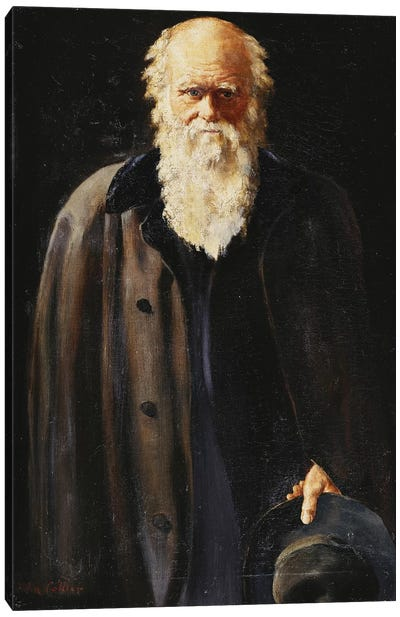 Portrait of Charles Darwin, standing three quarter length, 1897  Canvas Art Print