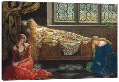 The Sleeping Beauty, 1921  Canvas Art Print