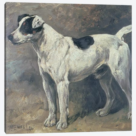 A Jack Russell, 1891 Canvas Print #BMN10688} by John Emms Canvas Print
