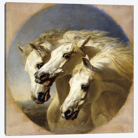 Pharaoh's Horses, 1848  Canvas Print #BMN10696} by John Frederick Herring Sr Canvas Art Print