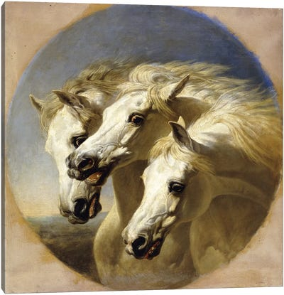 Pharaoh's Horses, 1848  Canvas Art Print