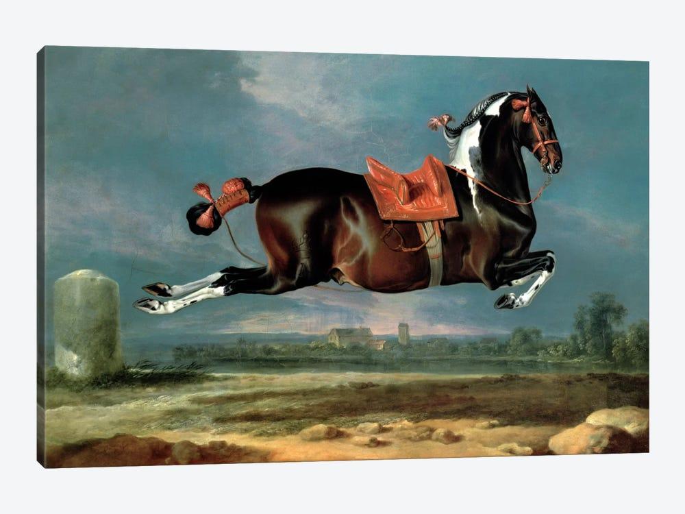 The piebald horse 'Cehero' rearing by Johann Georg Hamilton 1-piece Canvas Wall Art