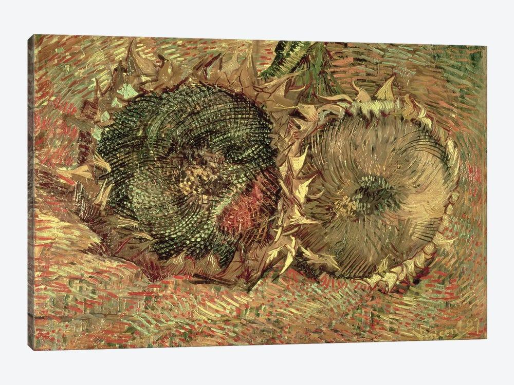 Two Cut Sunflowers, 1887  by Vincent van Gogh 1-piece Art Print