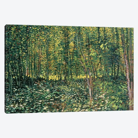 Trees and Undergrowth, 1887  Canvas Print #BMN1076} by Vincent van Gogh Canvas Art