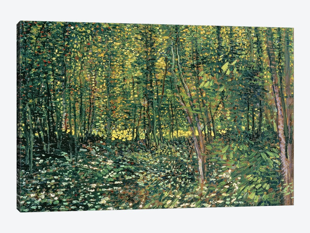 Trees and Undergrowth, 1887  by Vincent van Gogh 1-piece Canvas Wall Art