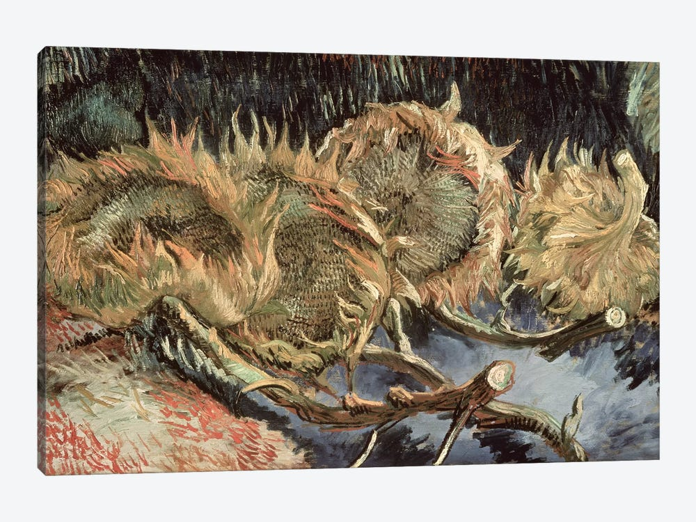 Four Withered Sunflowers, 1887  by Vincent van Gogh 1-piece Art Print