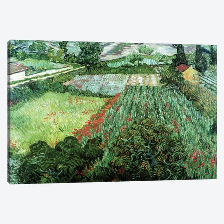 Field with Poppies, 1889  Canvas Print #BMN1078} by Vincent van Gogh Art Print