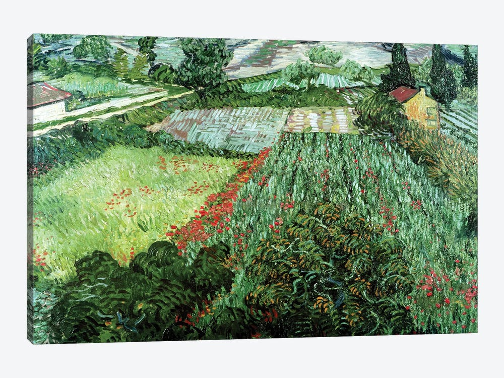 Field with Poppies, 1889  by Vincent van Gogh 1-piece Canvas Art