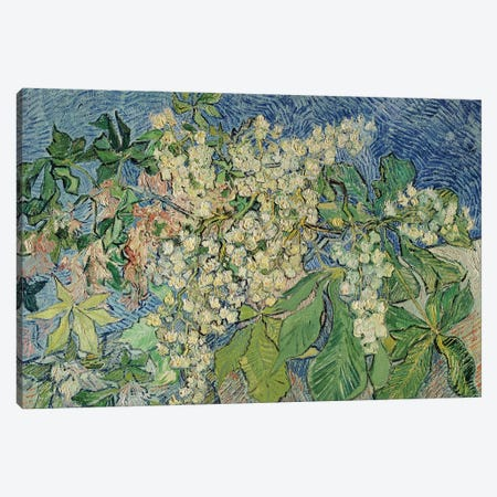Blossoming Chestnut Branches, 1890  Canvas Print #BMN1079} by Vincent van Gogh Art Print