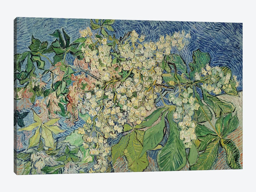 Blossoming Chestnut Branches, 1890  by Vincent van Gogh 1-piece Art Print