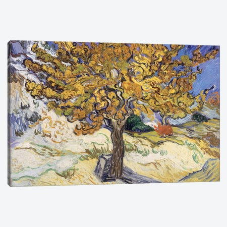 Mulberry Tree, 1889  Canvas Print #BMN1080} by Vincent van Gogh Canvas Art