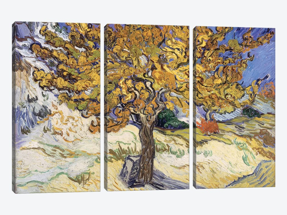Mulberry Tree, 1889  by Vincent van Gogh 3-piece Art Print