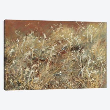 Thistles, 1885-89  Canvas Print #BMN10813} by John Singer Sargent Canvas Wall Art