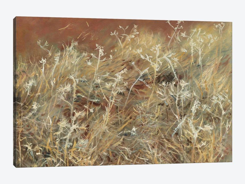 Thistles, 1885-89  by John Singer Sargent 1-piece Art Print