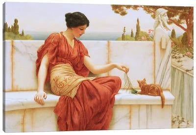 The Favourite, 1901  Canvas Art Print