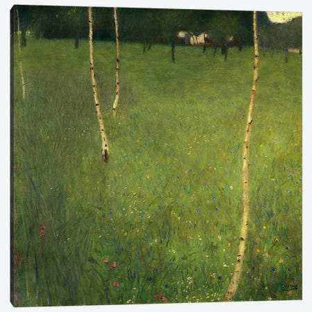 Farmhouse with Birch Trees, 1900  Canvas Print #BMN1084} by Gustav Klimt Canvas Art Print