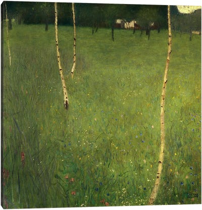 Farmhouse with Birch Trees, 1900  Canvas Art Print