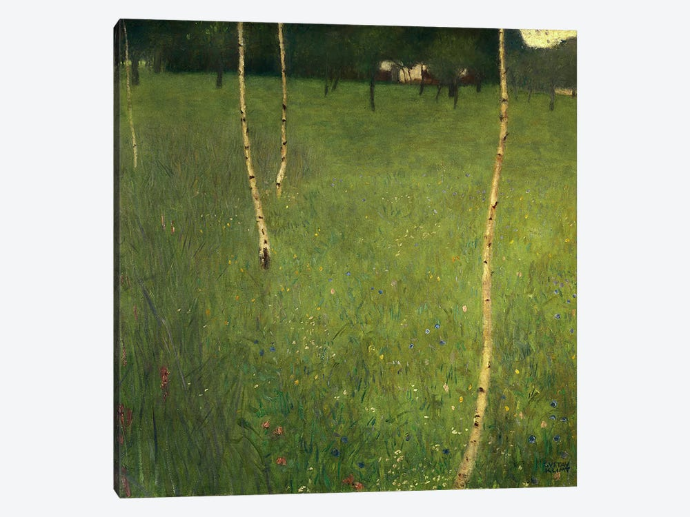 Farmhouse with Birch Trees, 1900  by Gustav Klimt 1-piece Art Print