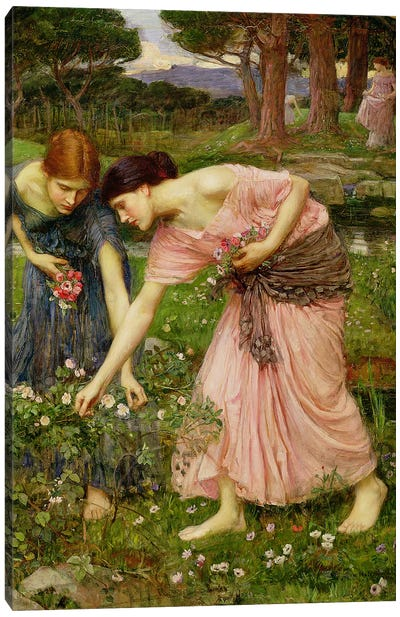 Gather Ye Rosebuds While Ye May', 1909  Canvas Art Print