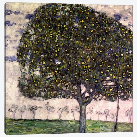 The Apple Tree II, 1916 Canvas Print #BMN1086} by Gustav Klimt Canvas Print