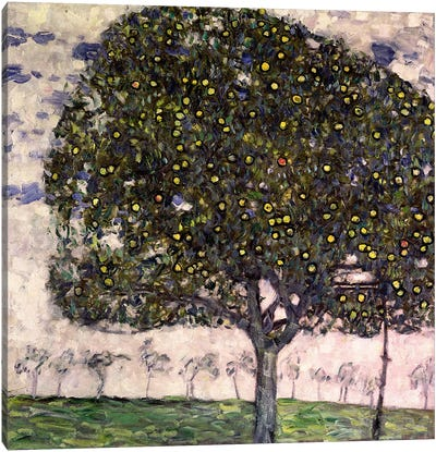 The Apple Tree II, 1916 Canvas Art Print