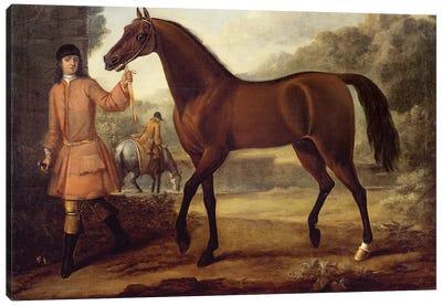 The Godolphin Arabian  Canvas Art Print