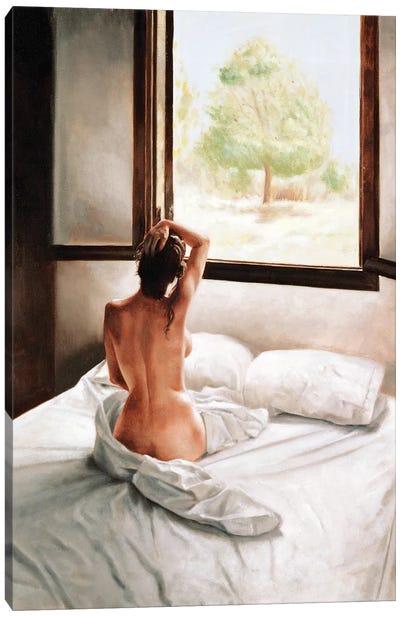 September Morning  Canvas Art Print